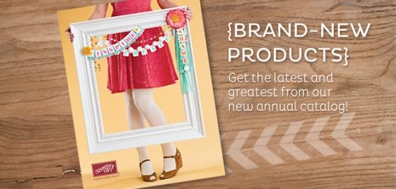2013 new catalog