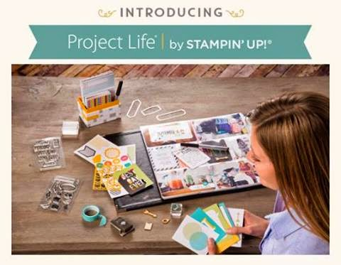 project life (1)