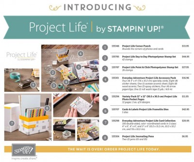 Project-Life-Preorder-400x334