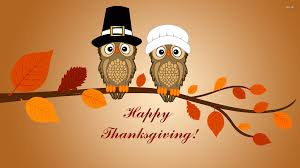 owl thanksgiving